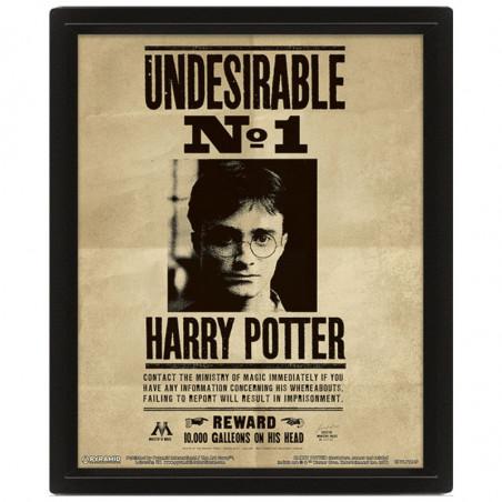 Cadre Harry Potter animé